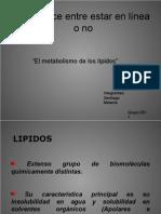 Metabolismo-lipidos