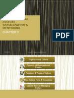 Organizational Behavior Culture & Changes