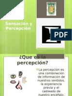 Exposicion Sensacion y Percepcion[1]