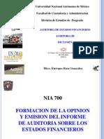 Nia 700 Formacion de Opinion y Emision Del Informe de Auditoria Sobre Los Estados Financieros Ergo 2015