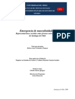 0246.- Fernandez Chagoya, Melissa Aime - Emergencia de Masculinidades. Representaciones Sociales Entre Jovenes Universitarios de Santiago de Chile