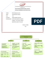 ORGANIZADOR VISUAL-  Martinez Lazaro William.pdf