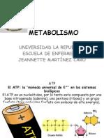 Metabolismo Celular 2015