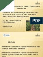 Javier Casaccia Paraguay