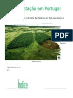 Desflorestação - Trabalho de Ciências