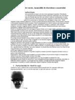 Particularităţile de varstă. Anomaliile de dezvoltare a masivului facial.