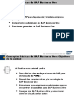 01 Conceptos Basicos de SAP Business One