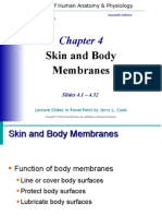 Skin and Body Membranes Ch 4 Marieb 7