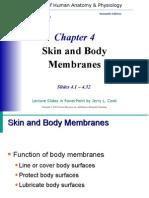 Skin and Body Membranes Ch 4 Marieb 7