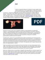 El Weblog De La Salud