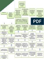 Arbol de Objetivos desarrollo sustentable