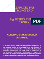 II_ETAPA_DEL_PAE.pdf