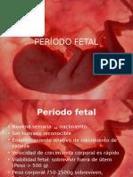 Periodo fetal.pptx