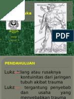 Deskripsi Luka