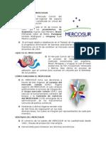 La Creación Del Mercosur