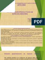 Sistemas Agroproductivos de Especies Menores Ppt