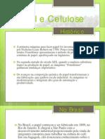 Papel e Celulose - Apresentação