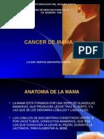 CA DE MAMA.imss