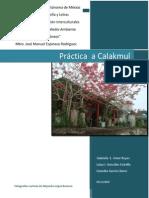 Práctica a Calakmul