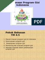 Program Gizi Indonesia