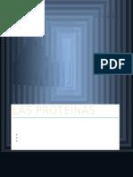 Las Proteínas Clasificación