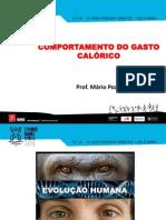 CP6 - Comportamento Do Gasto Calórico - Mário Pozzi