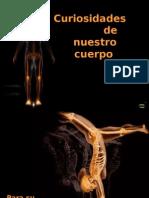 CuriosiDadEs Del Cuerpo Curiosidades del cuerpo Anatomia