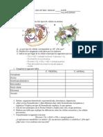 Examen del Tema 1 de Ciencias Naturales de 2ºESO