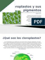 Cloroplastos y Sus Pigmentos
