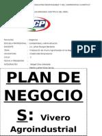 Plan de Negocios-Vivero Plantaciones