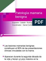20090810_patolog__a_mamaria (1).ppt