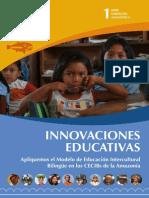 2. a. Innovaciones Pedagógicas AMEIBA