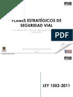 presentacin-explicativa-pesv_23014.pdf