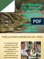 Pueblos Nativos