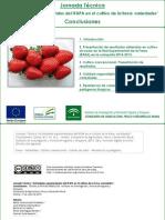Conclusiones Jornada Variedades de Fresa 2 Julio 15.pdf