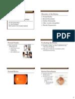Disorders of the Retina