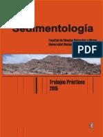 Guía de sedimentologia