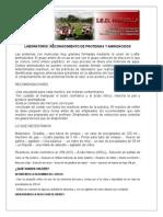 EXPERIMENTO-PROTEINAS-AMINOACIDOS