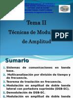 Tema 2 Mod Analog Am1
