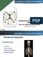 6 AFH 1213 Esqueleto Da Coluna e Do Torax (Impresso)
