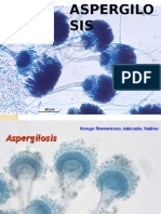 Clase 19 Aspergilosis y Neumocystosis 2015