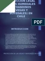 Proteccion Legal de Los Humedales Altoandinos (Vegas