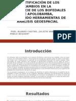 Identificación de Los Cambios en La Superficie de Los Bofedales de Apolobamba