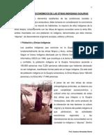 Aspectos Socio-Económicos de Las Etnias Guajiras