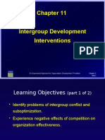 11- Intergroup Development Interventions
