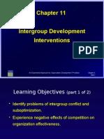 11- Intergroup Development Interventions