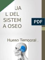 Manual Del Sistema Oseo