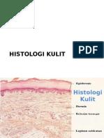 Histologi kulit