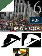 Tipia e Cor - Sintese