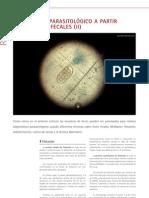 cys_29_22-24_Diagnóstico parasitológico a partir de muestras fecales (II)